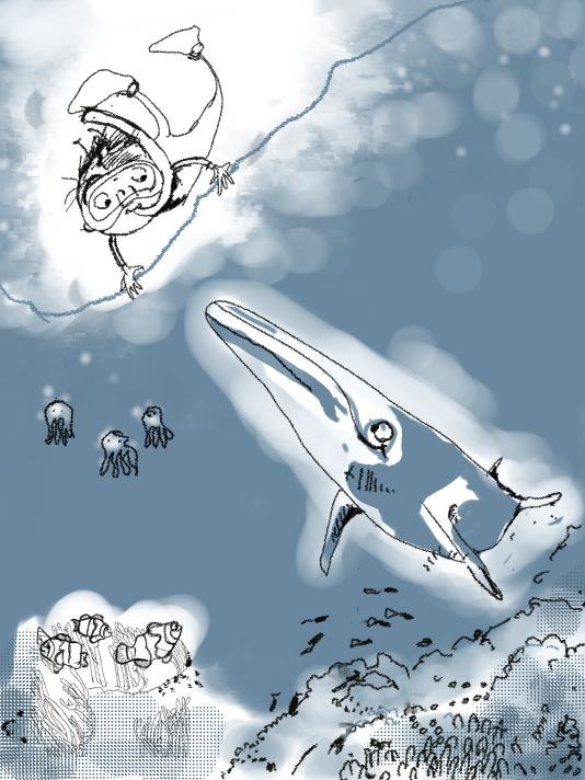 Sam Treasure spots a whale -